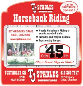 TJ stables