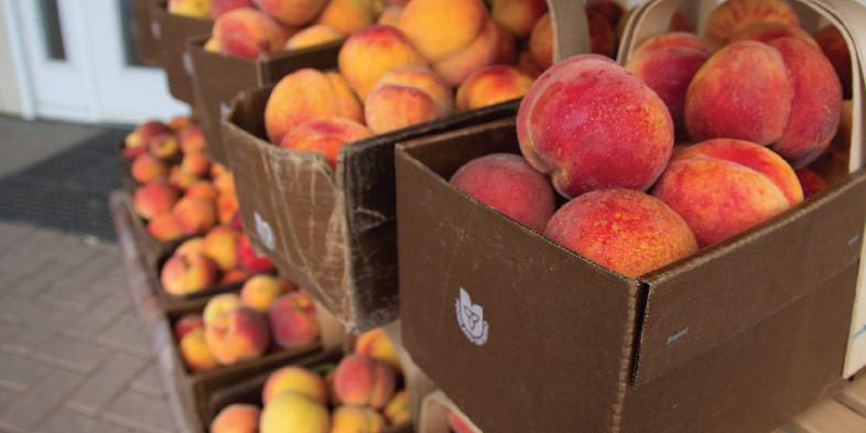 farm markets peaches